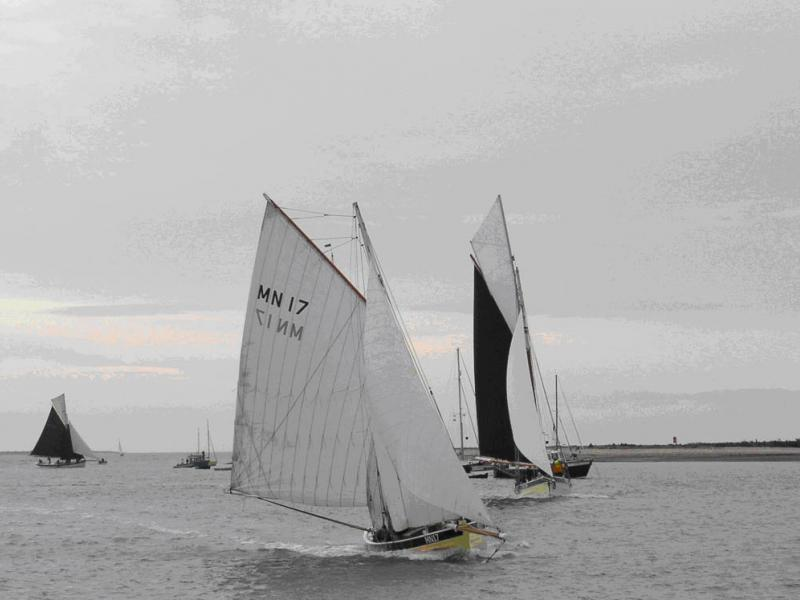 FLY under sail, bow view