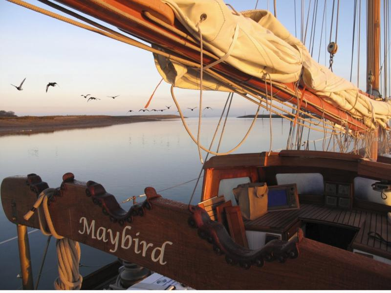 Maybird -  Early morning Newtown Creek - Photo Comp 2011 Overall Winner