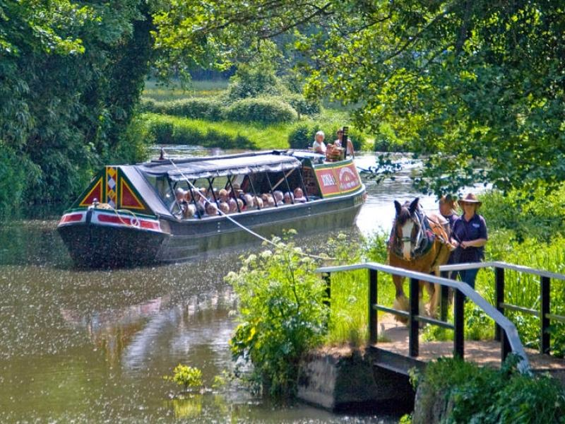 Iona - on the River Wey being horsedrawn