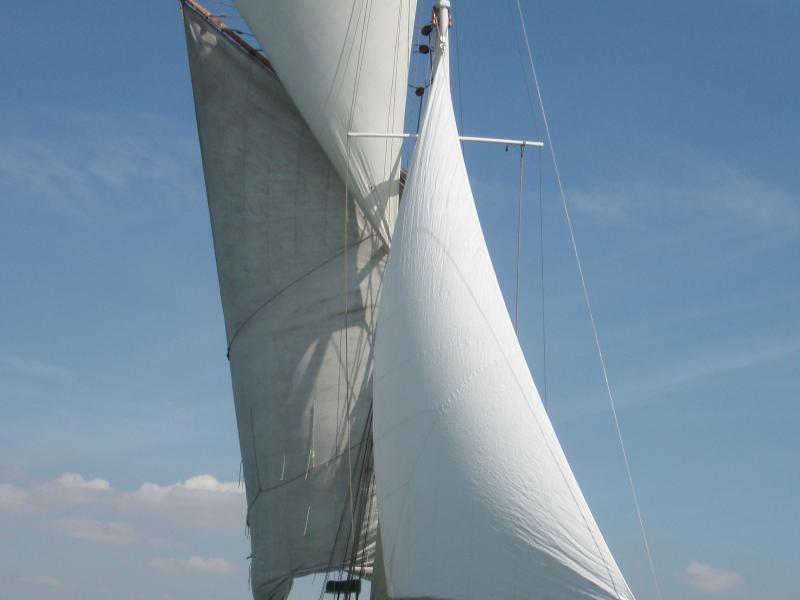 Saxonia under sail