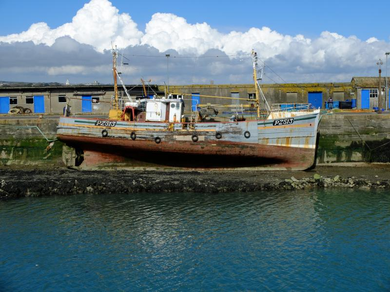 In Newlyn Harbour
