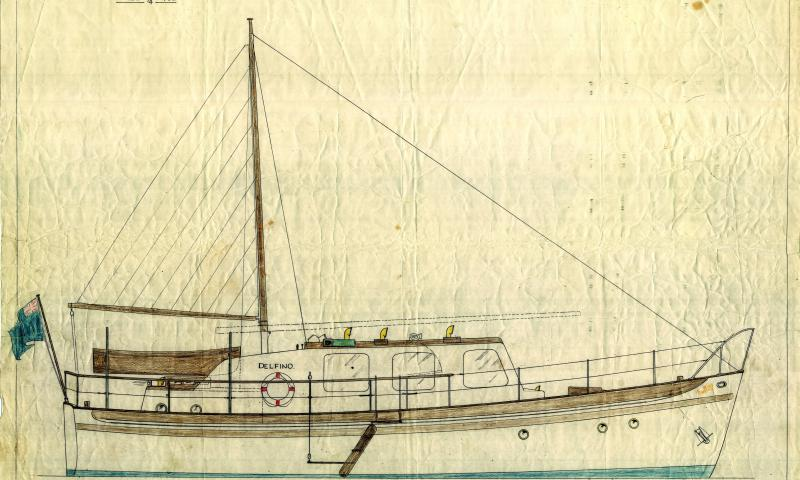 Delfino when named 'Dolphin of Rhu'