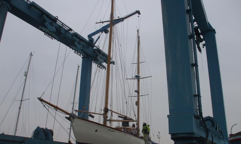MAYBIRD re-masted