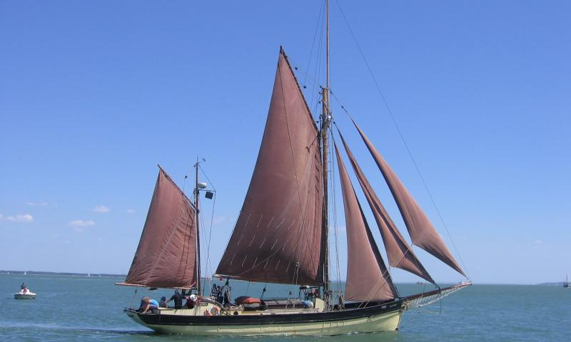 Speedwell in the Solent