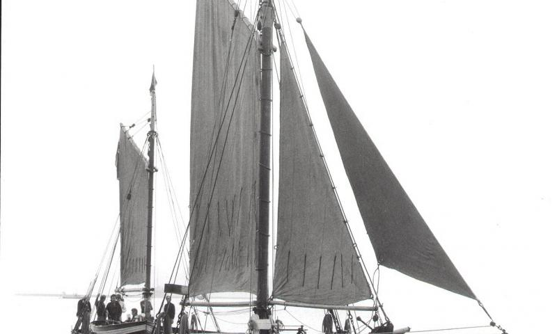 Shamrock under sail - starboard bow