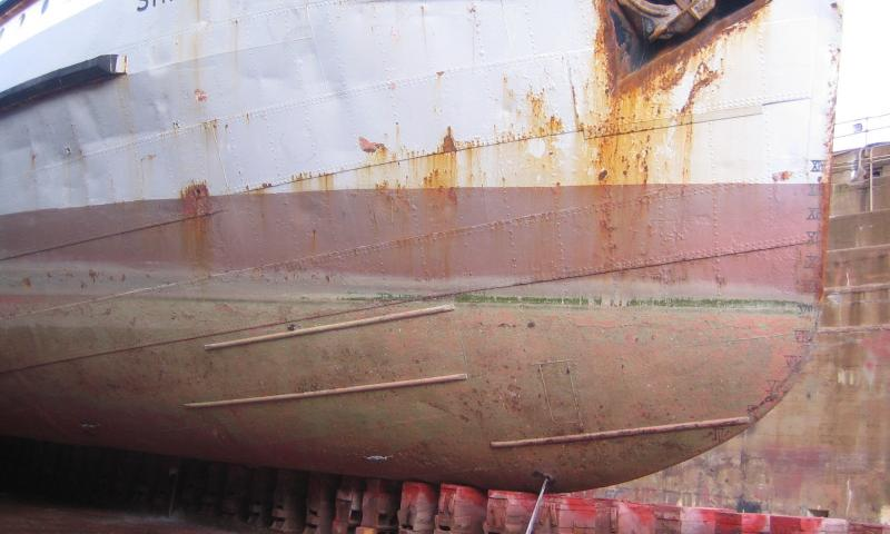 Shieldhall - shows the starboard bow area, just after the dock had been drained. Little marine growth underwater.