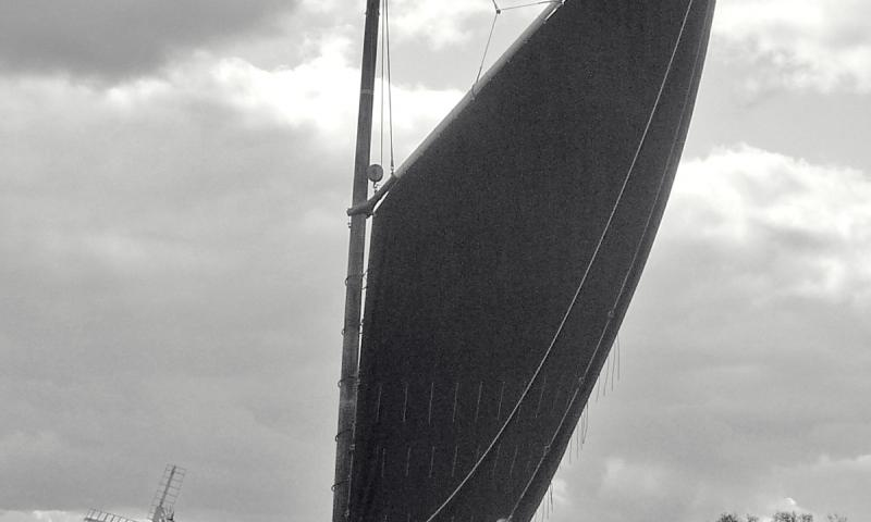 Albion under sail